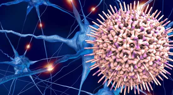 Herpes: IgM e/o IgG alti - Scopri i valori normali!