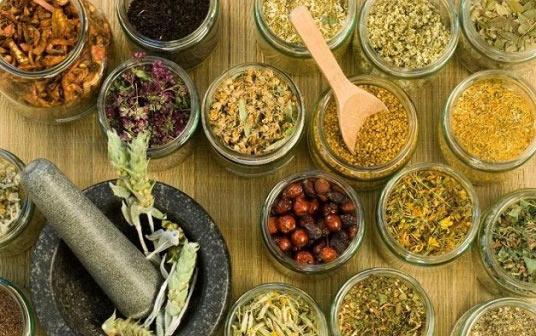 hierbas-y-plantas-medicinal