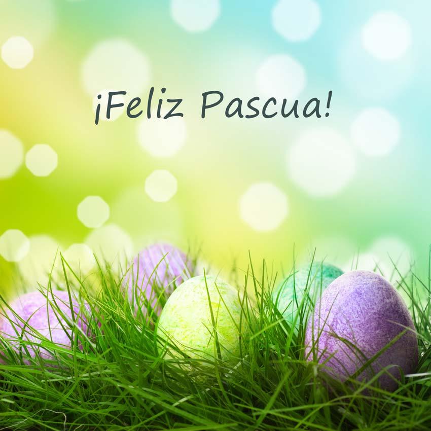 Labo'Life te desea una feliz Pascua