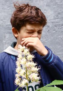 La respuesta alérgica: ¿por qué con el tiempo aparecen más alergias?